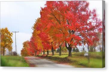 Red And Yellow Mercer Pa Canvas Print by Tom Bush IV