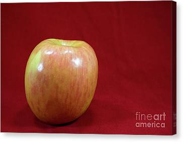 Canvas Print featuring the photograph Red Apple by Michael Waters