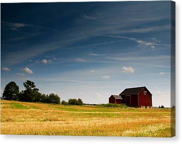 Red Barn Canvas Print by Cale Best