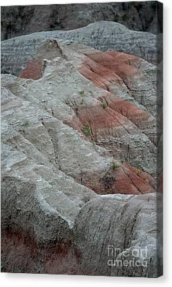 Red Canvas Print by Chris Brewington Photography LLC