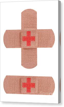 Red Cross Bandages Canvas Print by Blink Images