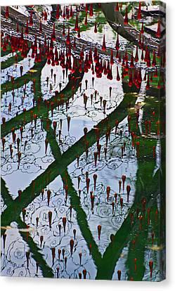 Red Crystal Refletcion Canvas Print by Garry Gay