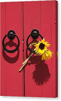 Red Door Sunflowers Canvas Print by Garry Gay