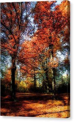 Red Fall Canvas Print by Hannes Cmarits