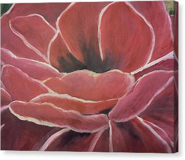Red Flower Canvas Print by Christy Saunders Church