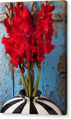 Red Glads Against Blue Wall Canvas Print by Garry Gay
