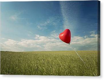 Red Heart Balloon, Blue Sky And Fields Canvas Print by Image by Debbie Margetts - Ancora Imparo