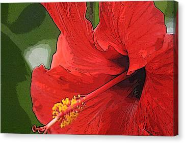 Canvas Print featuring the photograph Red Hibiscus by Donna  Smith
