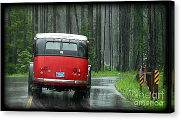 Red In The Rain Canvas Print