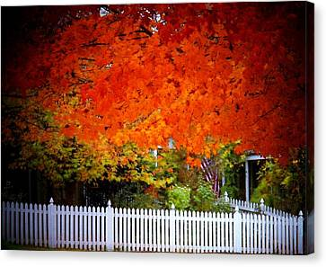 Red Leaves And White Fence Canvas Print