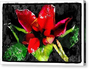 Red Leaves Canvas Print by Mauro Celotti