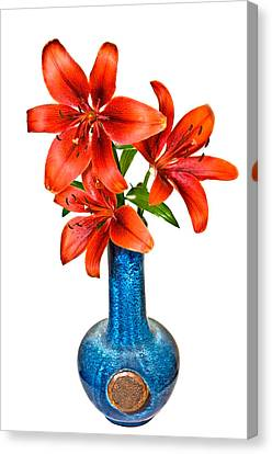 Red Lilies In Blue Vase Canvas Print by Susan Leggett