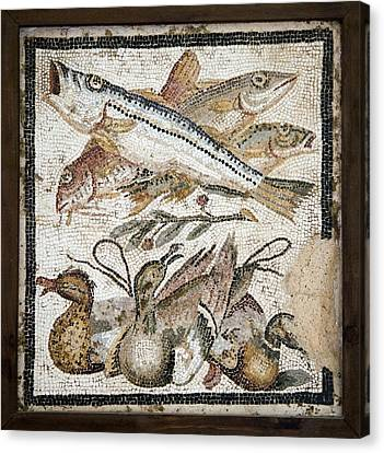 Red Mullets And Ducks, Roman Mosaic Canvas Print by Sheila Terry