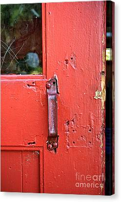 Red Of Course Canvas Print by Gwyn Newcombe