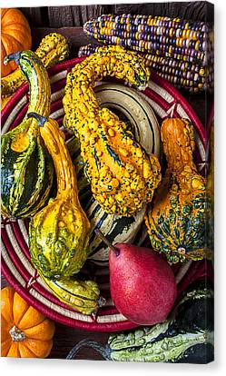 Red Pear And Gourds Canvas Print by Garry Gay