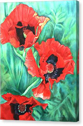 Red Poppies Canvas Print by Leslie Redhead