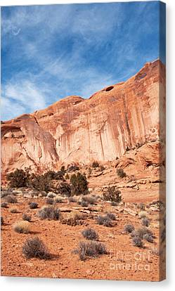 Red Rock And Blue Skies 2 Canvas Print by Bob and Nancy Kendrick