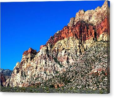 Red Rock Canyon 65 Canvas Print by Randall Weidner