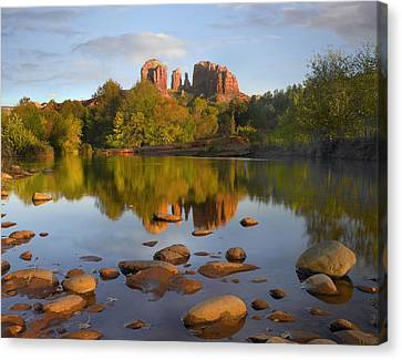 Red Rock Crossing Arizona Canvas Print by Tim Fitzharris