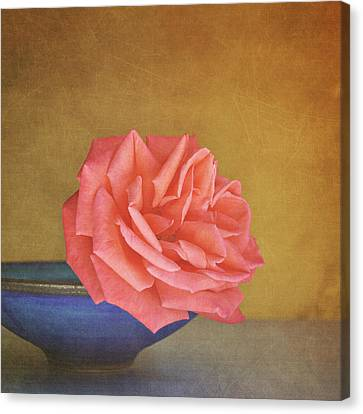 Gold Color Canvas Print - Red Rose by Photo - Lyn Randle