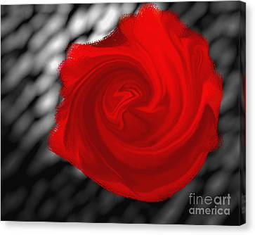 Nature Center Canvas Print - Red Rose by Ricky Schneider