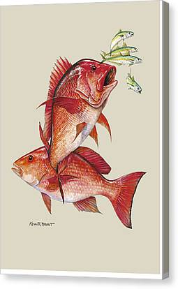 Canvas Print - Red Snapper by Kevin Brant