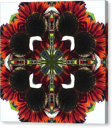 Red Sunflowers Canvas Print by Trina Stephenson