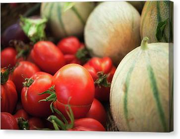Cantaloupe Canvas Print - Red Tomatoes And Cantaloupe Melons by Alexandre Fundone