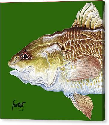 Redfish Headach Canvas Print by Kevin Brant