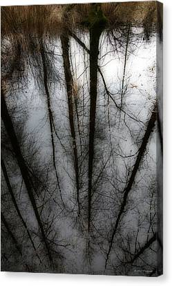 Reflecting On A Winter Day Canvas Print by Winston Rockwell