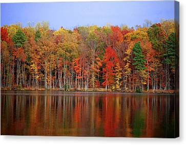 Reflecting On Time Canvas Print by Linda Mesibov