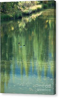 Canvas Print featuring the photograph Reflection by Bob and Nancy Kendrick