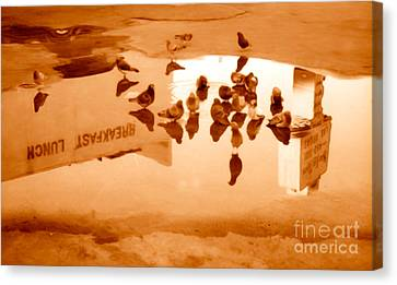 Reflection Canvas Print by Gregory Dyer