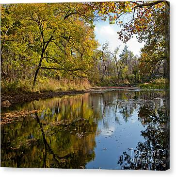 Reflection In A Dreamy Pond Canvas Print