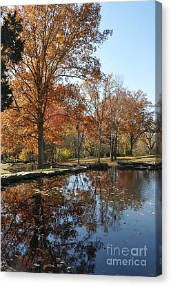Reflection In The Water Canvas Print by Denise Ellis