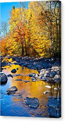 Reflections Down The Creek Canvas Print by Adam Pender