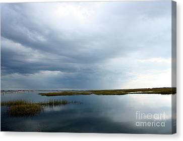 Reflections Canvas Print by Gail Behrik
