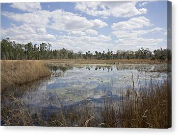 Canvas Print featuring the photograph Reflections by Lynn Palmer