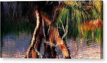 Reflections Canvas Print by Michelle Wrighton