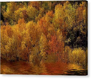 Reflections Of Autumn Canvas Print by Carol Cavalaris