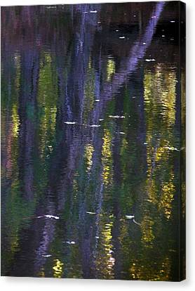 Reflections Of Monet Canvas Print by Terry Eve Tanner