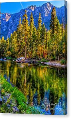 Reflections On The Merced River Yosemite National Park Canvas Print by Eyal Nahmias