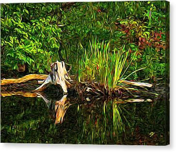Reflections Canvas Print by Sotiri Catemis