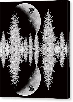 Reflective Shadows Canvas Print by Lourry Legarde
