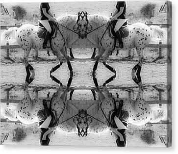 Reflective Thinking Canvas Print