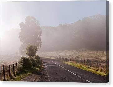 Refreshing Morning Fog In Trossachs. Scotland Canvas Print by Jenny Rainbow