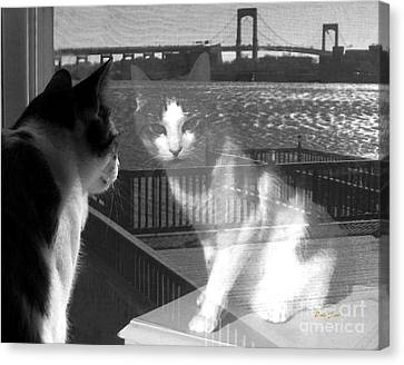 Reggie Reflected Canvas Print