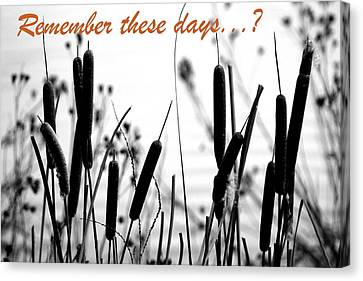 Remember The Days Canvas Print