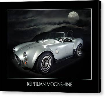 Reptilian Moonshine Canvas Print by Robert Twine