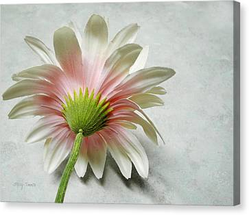 Canvas Print featuring the photograph Reserved by Mary Timman
